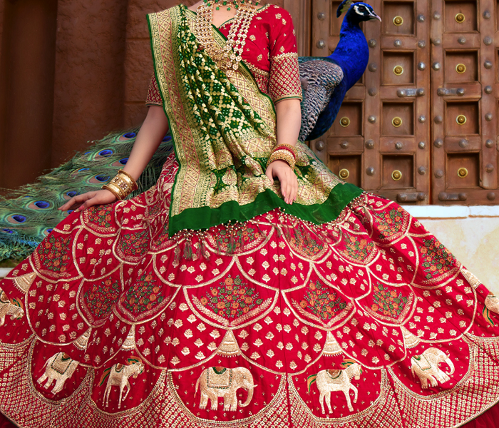 Indian Wedding Bridal Collection